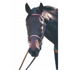 Конная уздечка из натуральной кожи для лошади и пони, с поводьями, Франция, цвет коричневый